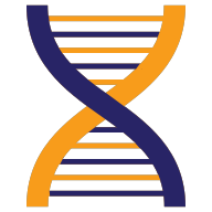 dna helix representing safety management and safety culture improvement